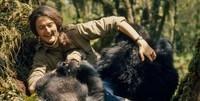 Dian Fossey (6)