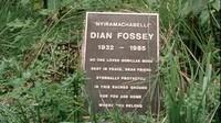 Dian Fossey (9)