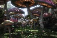 Alice au pays des merveilles (10)