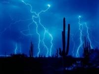 nuit_orageuse_au-dessus_des_cactus