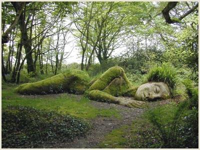 Tableaux et oeuvres ... notre post pour le partage Strange-art-heli-land-art-img