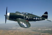 P47 Thunderbolt le Tank volant