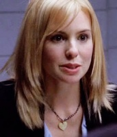 Olivia d'Abo is nicole wallace NYsection criminelle