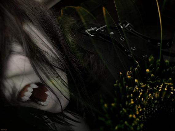 vamp12