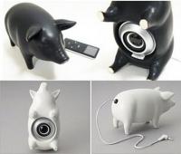 webcam pig