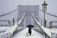pont de brooklyn janvier 2014