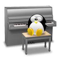 pingo pianiste