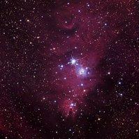 NGC2264 la Nébuleuse du Cône