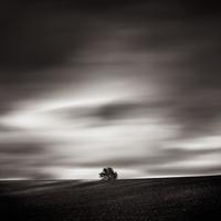 solitude 21 avril 2012 - Photo de Laurent Miaille