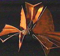 Bajoran Solar Sail Vessel (DS9)