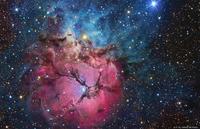 nébuleuse Trifide dans la constellation du Sagittaire