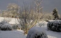 neige en novembre