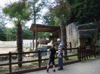 zoo amnevill 2012