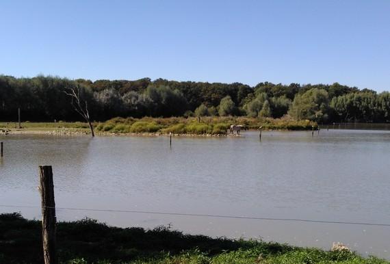 parc Sainte Croix