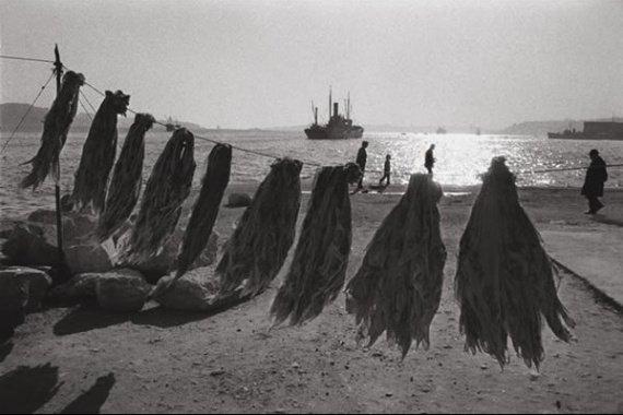 ara-guler-ortakoy-1964-img