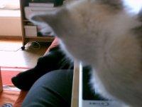 attention Bludy... je te surveille moi!