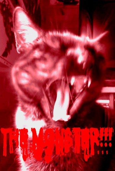 Mon monstre :3