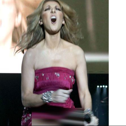 celine_dion_dress_small