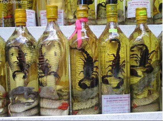 liqueur-serpent