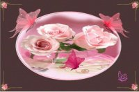 papillons et roses roses