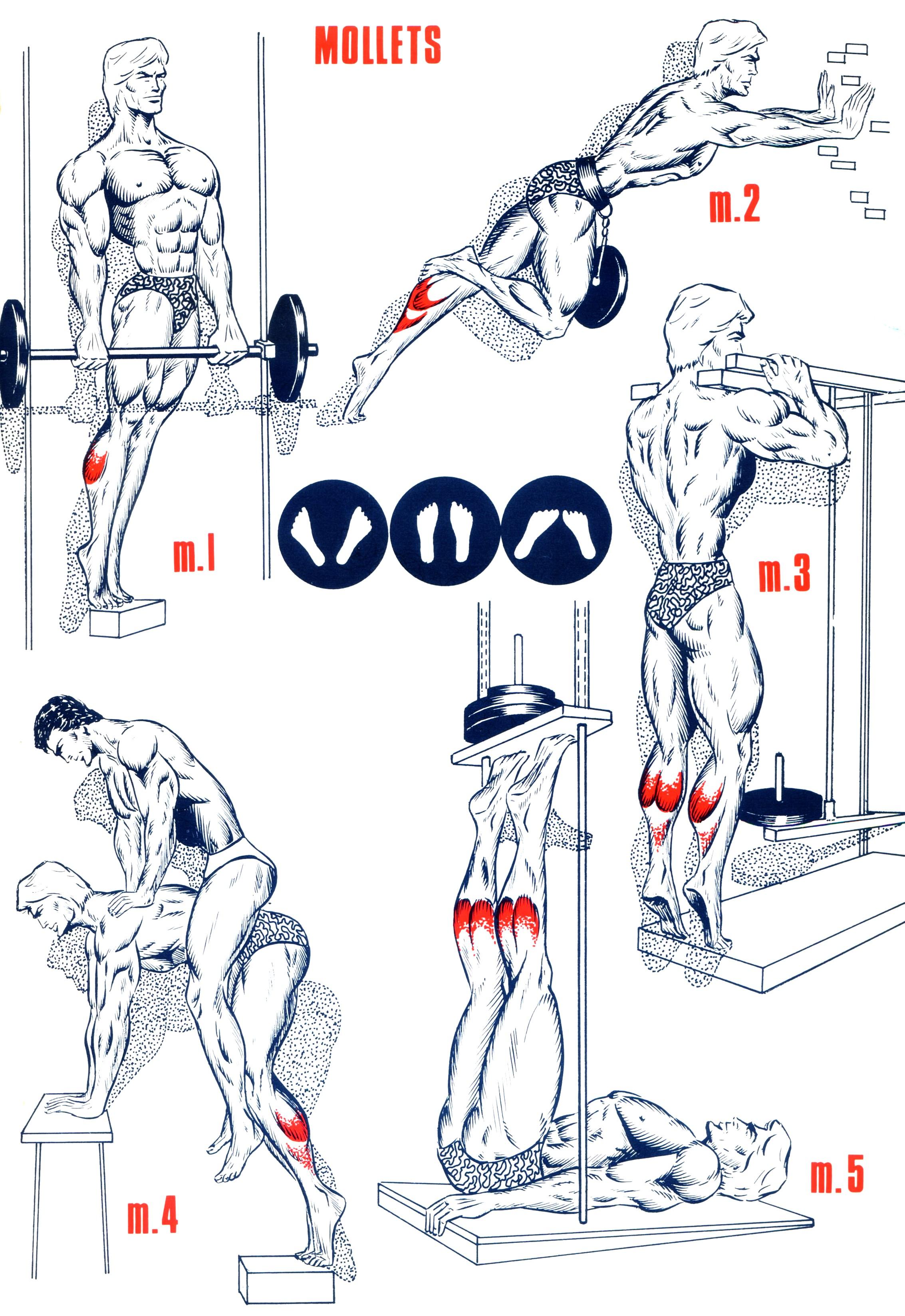 les exercices de kegel pour homme pdf