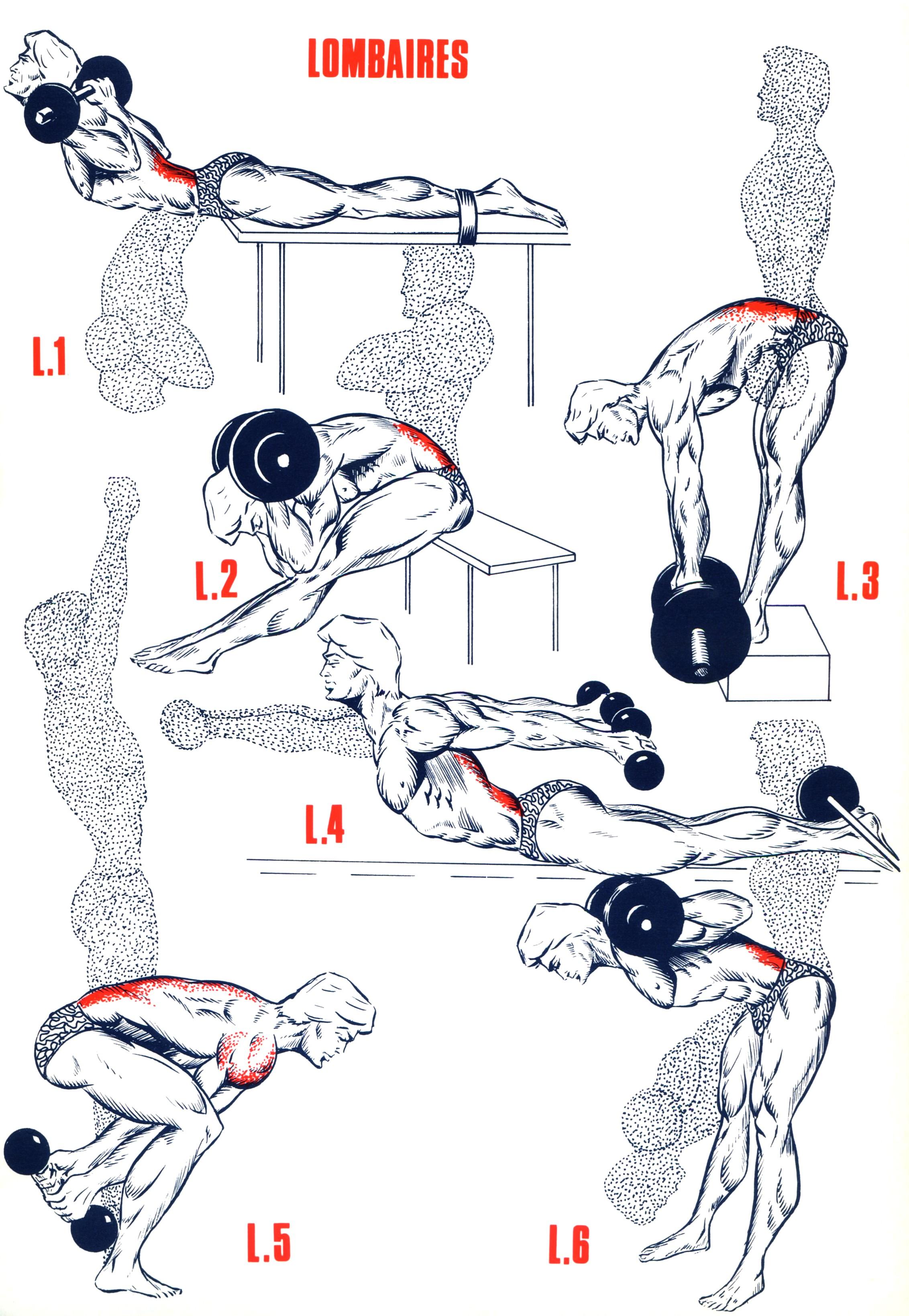 Эффективные упражнения для ягодиц в домашних условиях