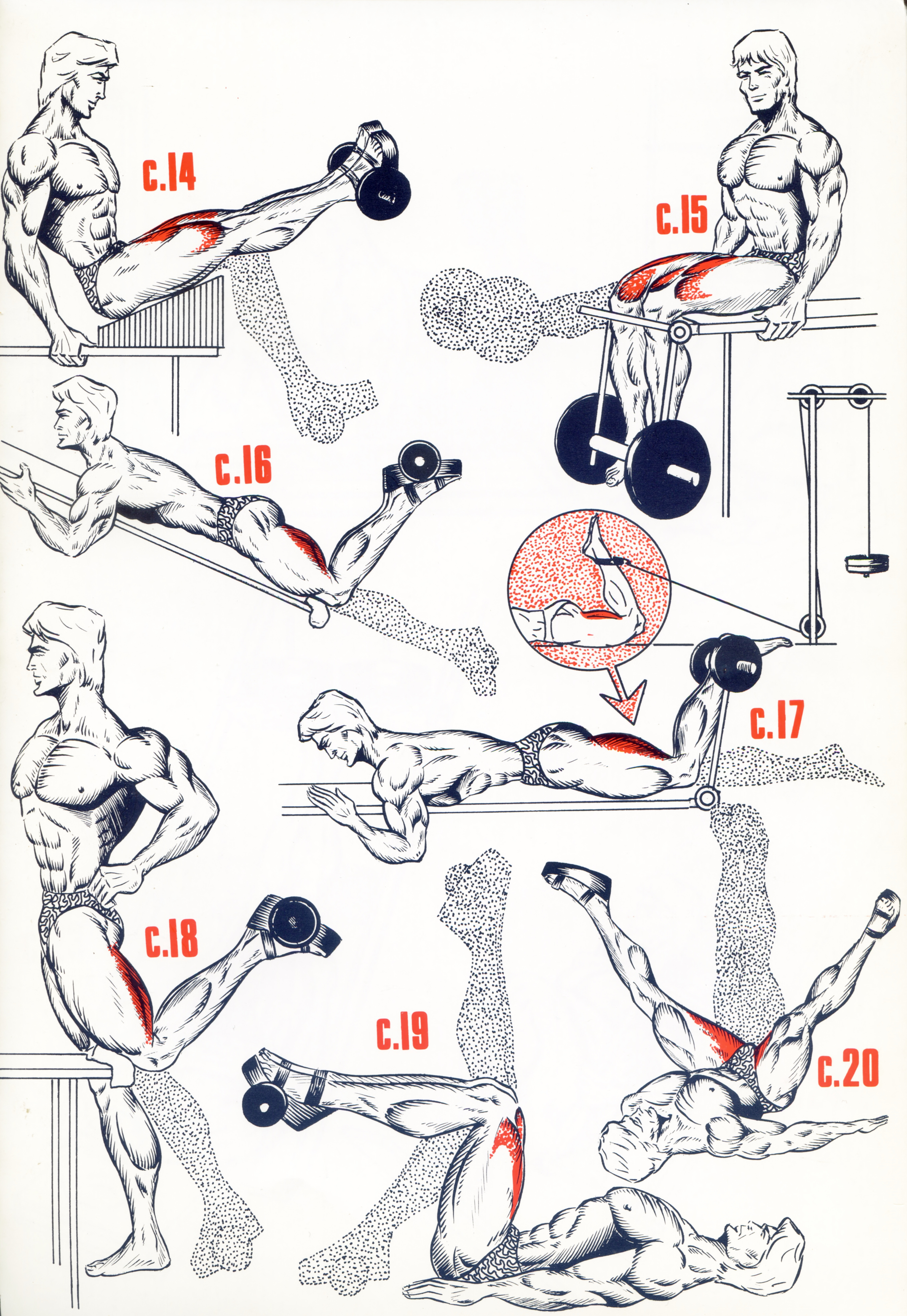 Cuisses3 - Musculation - jackdaniels1 - Photos - Club ...