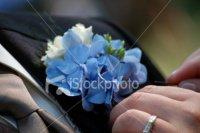 stock-photo-3927816-boutonniere