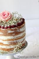 nude-cake-5-sur-11