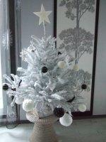 2012-12-18 sapin 001