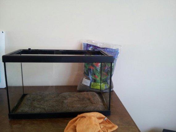 installation aquarium (1)