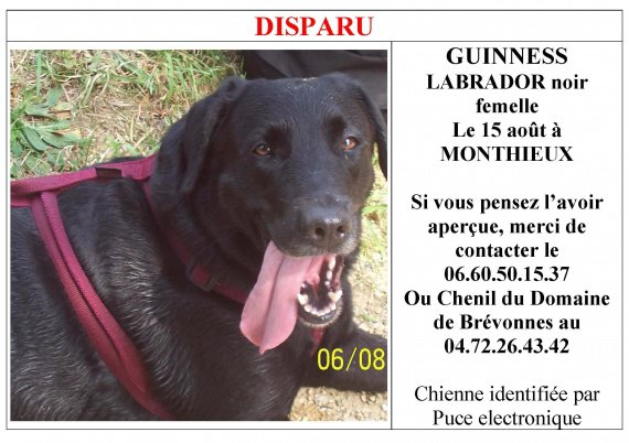 Annonce_Guinness_DISPARU[1].jpg 2
