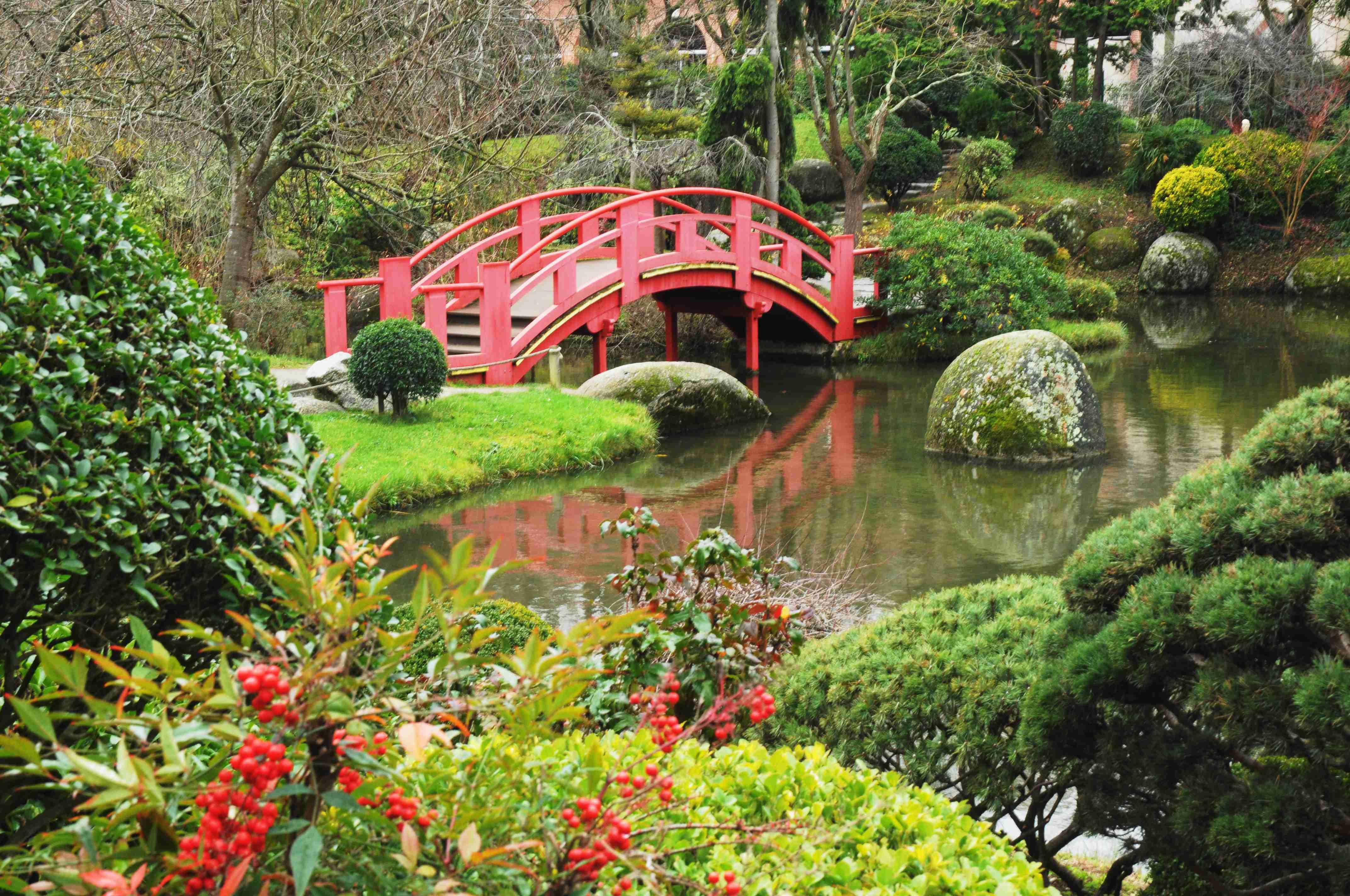 Jjc1 jardin japonais legerete33 photos club doctissimo for Jardin japonais plantes