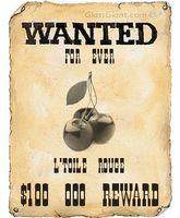 wantedposter (cerise)