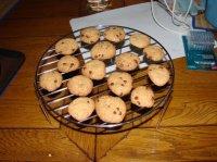 cookies olivia compatible