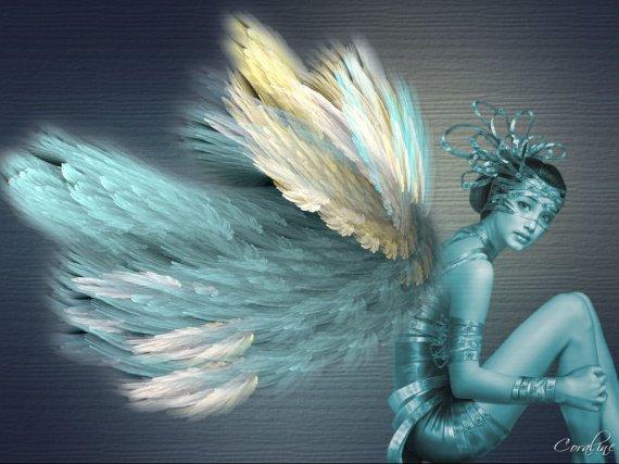 fairie01++
