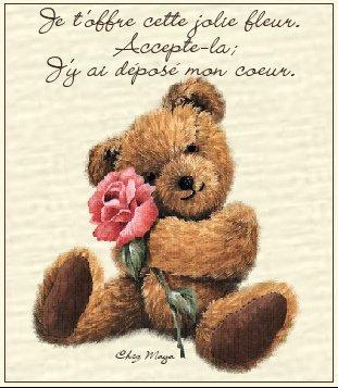 jolie-fleur ours