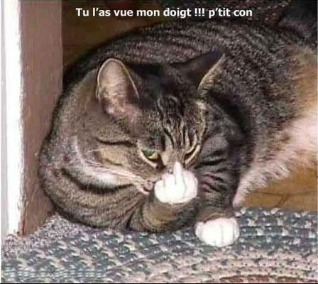 private-category-animaux11-img