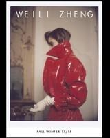 Wzheng16