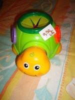 tortue à formes (il y a juste 2 forme ) je donne contre fdp