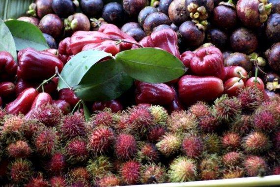 mangoustans