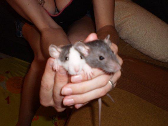 Iris et Keyla