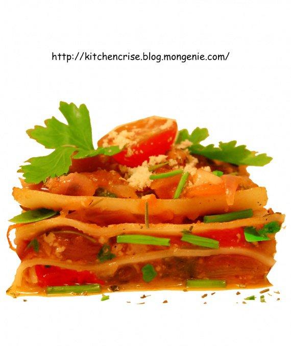 lasagne vegetarien copie