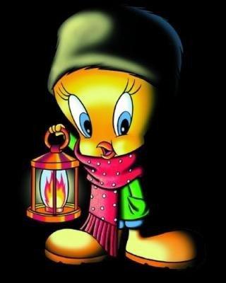 titi écharpe bonnet lanterne nuit