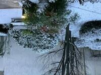 La neige a l'envers !