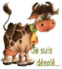 vache desolee-75929946d