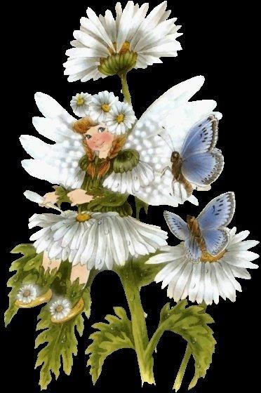 fille papillon fleurs-1036491df1