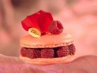 macaron framboises 33-4808332c29