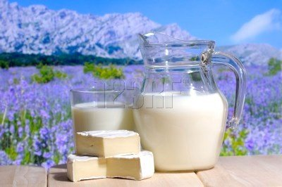 lait fromages