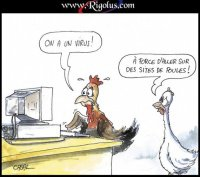 poule coq ordi virus